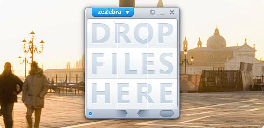 zezebra condividere grandi file